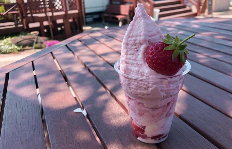 ベリー農園のソフトクリーム屋
