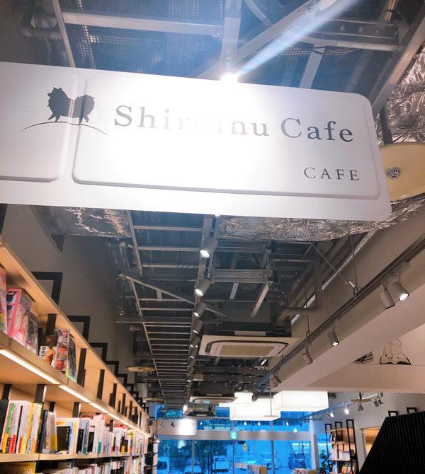 しろいぬカフェ